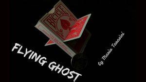 Flying Ghost by Mario Tarasini video