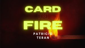 Card in Fire by Patricio Teran video DOWNLOAD - Download