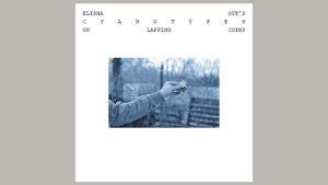 Cyanotypes by Elisha Ott eBook DOWNLOAD - Download