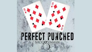 Perfect Punched By Nico Guaman video DOWNLOAD - Download