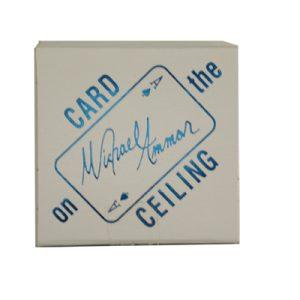 Card on Ceiling (Box) by Michael Ammar
